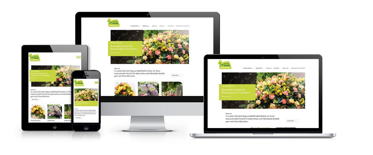 Haag-Responsive-Darstellung-Webseite